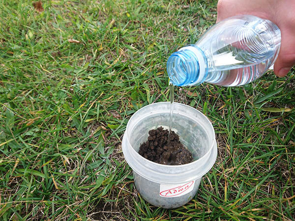 add water to soil to test soil pH